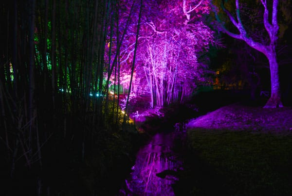 a17_Light show__8329