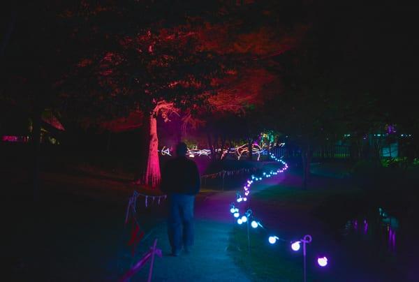 a18_Light show__8354