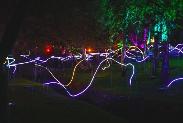 a18_Light show__8363
