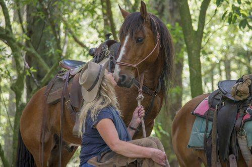 Kaimaniwa horses